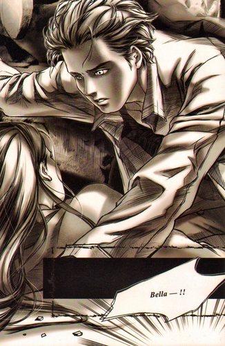 Graphic novel (12)