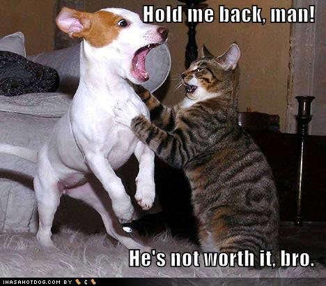 Hold me back !!
