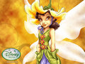 Lily - disney-fairies wallpaper