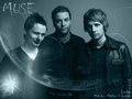 MUSEMUSE - muse wallpaper