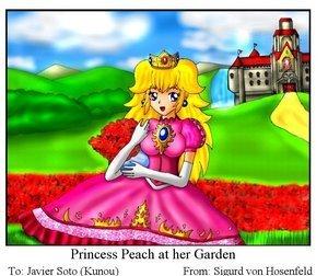 Princess Peach:D
