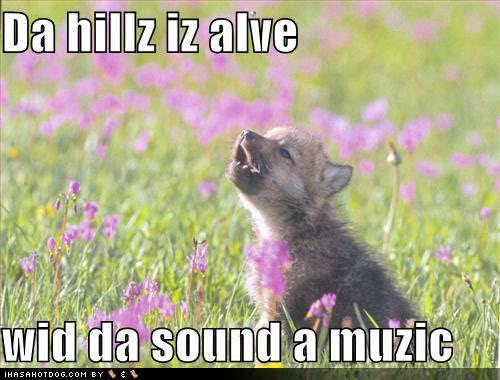 歌う 子犬 :)