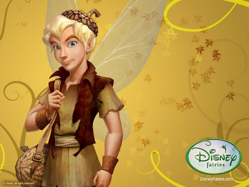 Terence-disney-fairies-13480662-800-600.