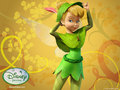 Tinkerbell - disney-fairies wallpaper