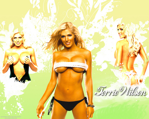 WWE Divas wallpaper entitled Torrie Wilson