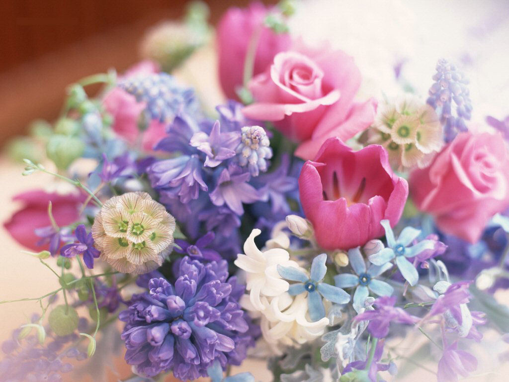 a-bunch-of-flowers-spring-13476394-1024-