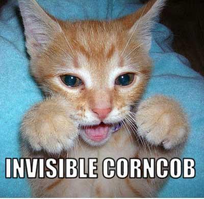 invisible...