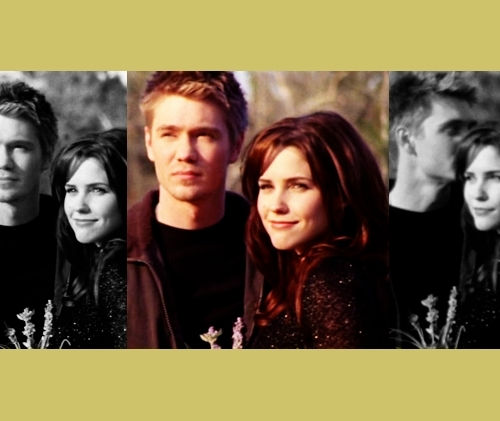 Brooke Davis wallpaper called piscam