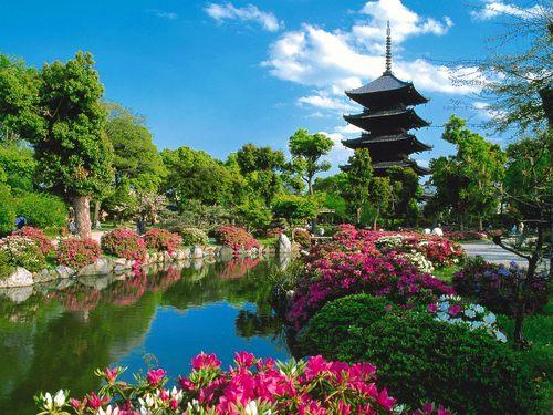 spring in japón