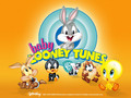 Baby Looney Tunes - the-looney-tunes photo