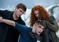 Eclipse still - twilight-series photo