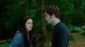 Edward & Bella - twilight-series photo