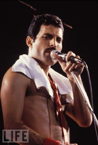 Freddie Mercury wallpaper titled Freddie