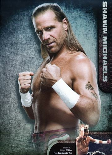 Shawn Michaels Hintergrund entitled HBK