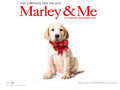 marley-and-me - Marley & Me wallpaper