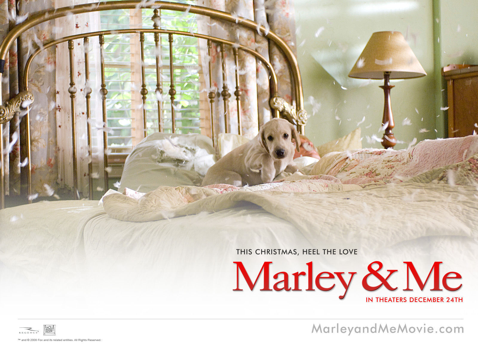 marley me Marley & me: life and love with the world's worst dog [john grogan] on amazoncom free shipping on qualifying offers the heartwarming and unforgettable story of a.