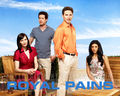 Royal Pains - royal-pains wallpaper