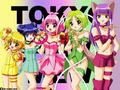 Tokyo mew mew - tokyo-mew-mew wallpaper