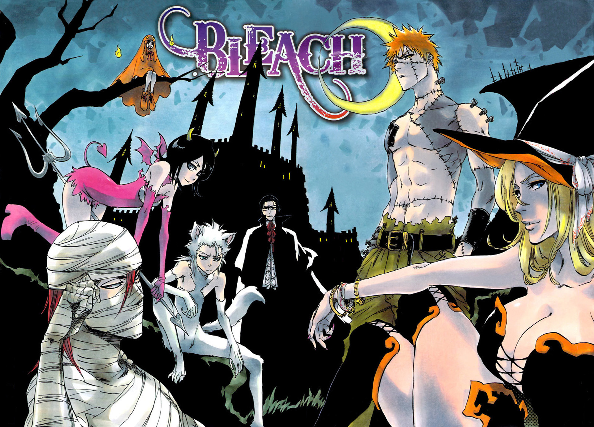 Bleach Manga Tv Images Wallpapers Hd Wallpaper And Background Photos