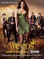Weeds Season 6 Poster