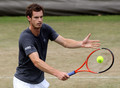Wimbledon Day 10 (July 1) - andy-murray photo