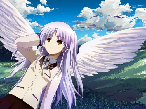 Wings Of Tenshi
