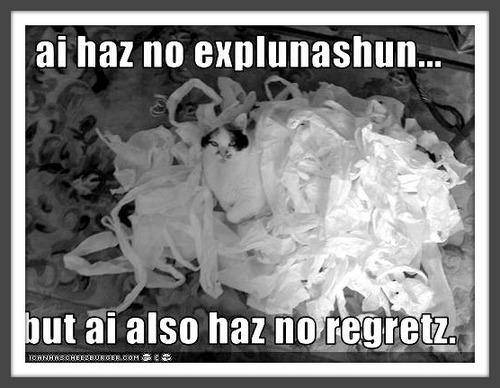 no-explanations-and-no-regrets