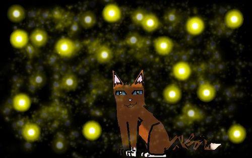 some cat i made