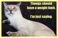 thONgs shouLD HAve a weIGHt  limIT...IM JUst sayiNG :)) - funny-pictures fan art