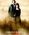 twilight  pics - twilight-series photo