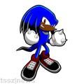 Charly the echidna - boy-sonic-fan-characters photo