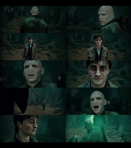 Deathly Hallows Voldemort n Harry