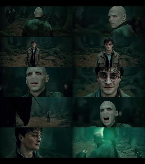 Deathly Hallows Voldemort n Harry