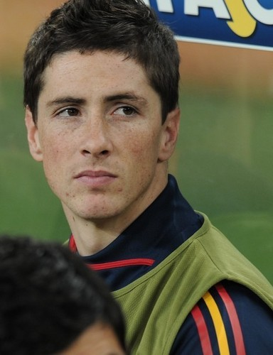 Fernando Torres 壁纸 titled Fernando Torres - Spain (1) vs Germany (0)