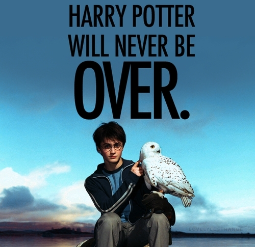 Harry Potter wallpaper entitled Harry Potter