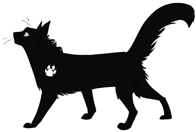 Warrior Cats Image Service images Hollyleaf wallpaper and background ...
