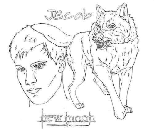 Jacob and his wolf form