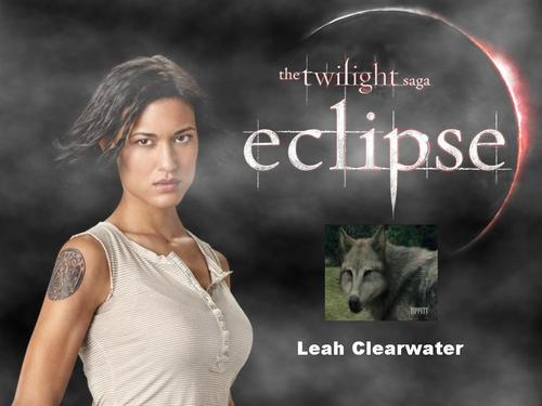 Leah Clearwater Wallpaper Titled Leah C.