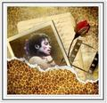 Lovely as a rose - michael-jackson photo