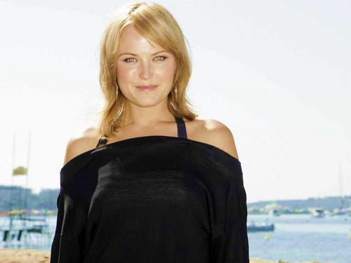 Malin Akerman wallpaper entitled Malin Akerman