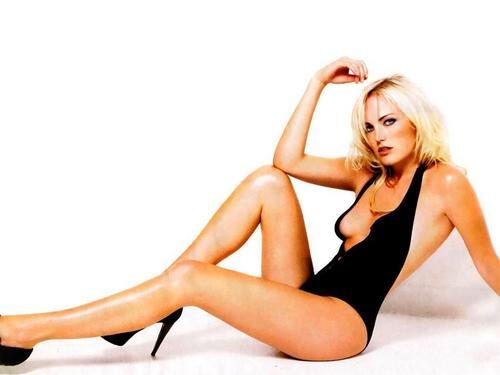 Malin Akerman wallpaper called Malin Akerman