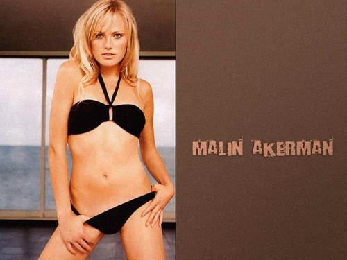 Malin Akerman Обои called Malin Akerman