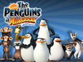 PoM Wallpaper  - penguins-of-madagascar wallpaper