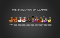 The Evolution of Llamas