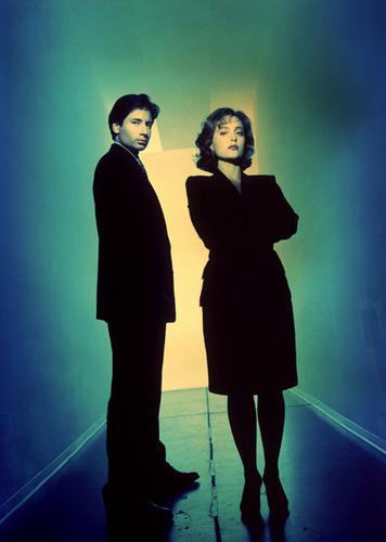 http://images2.fanpop.com/image/photos/13600000/The-X-Files-the-x-files-13610449-356-500.jpg