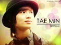 cute maknea TAEMIN - shinee wallpaper