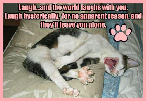 lauGH :))