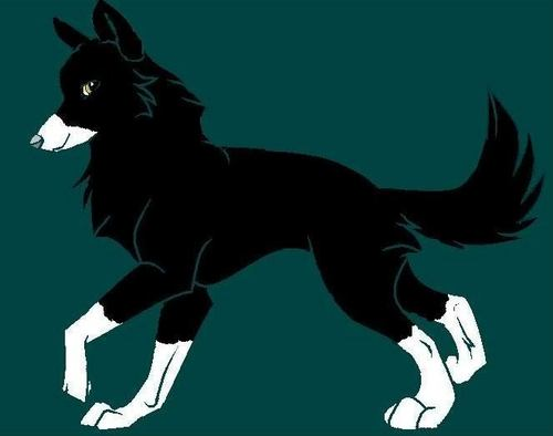 me as a wolf) Darky they called me!