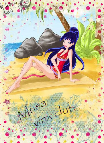 musa de praia, praia