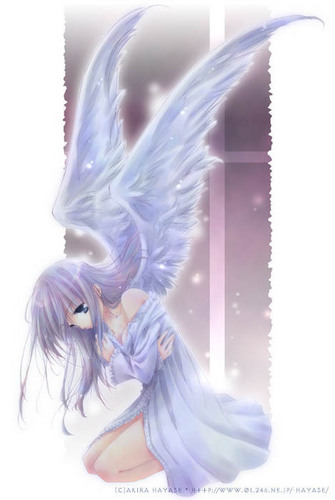 anime Angel girl